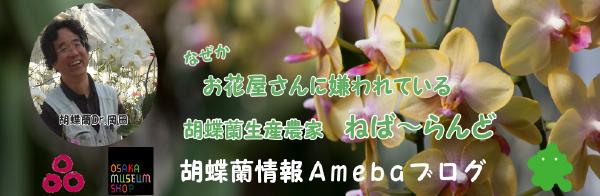 なぜかお花屋さんに嫌われている胡蝶蘭生産農家ねばーらんどのブログ